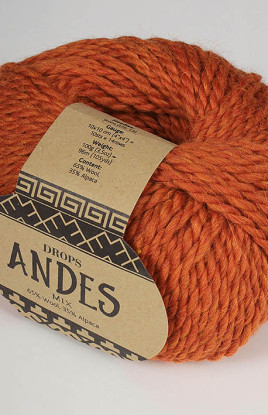 Andes_2920
